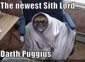 The newest Sith Lord...  Darth Puggius