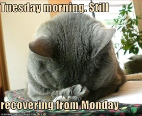 Tuesday morning. Still  recovering from Monday.