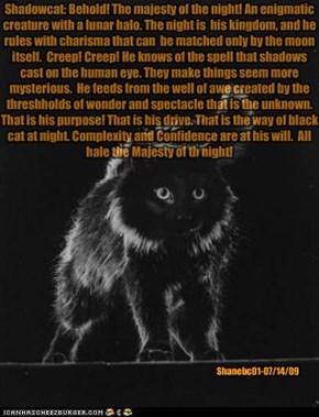 Shadowcat: Behold! The majesty of the night! An enigmatic creature with a lunar halo. The night is  his kingdom, and he rules with charisma that can  be matched only by the moon itself.  Creep! Creep! He knows of the spell that shadows cast on the human e