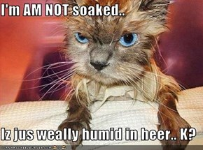 I'm AM NOT soaked..  Iz jus weally humid in heer.. K?