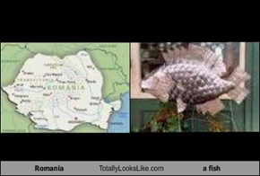 Romania Totally Looks Like a fish