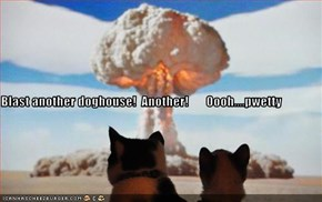 Blast another doghouse!  Another!       Oooh....pwetty