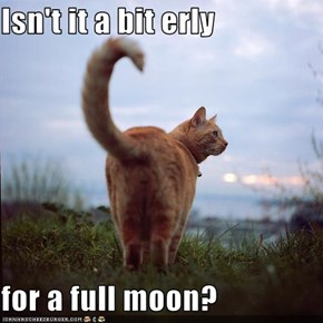 Isn't it a bit erly  for a full moon?