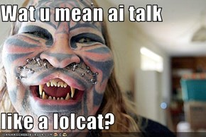Wat u mean ai talk   like a lolcat?