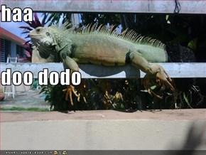 haa doo dodo
