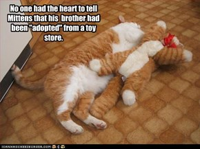 "No one had the heart to tell Mittens that his  brother had been ""adopted"" from a toy store."