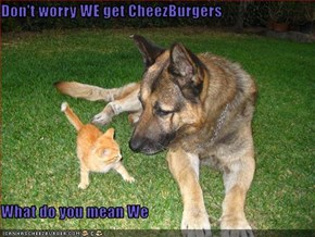 Don't worry WE get CheezBurgers  What do you mean We