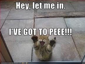 Hey, let me in.  I'VE GOT TO PEEE!!!