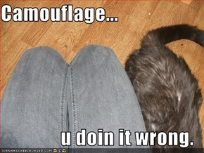 Camouflage...  u doin it wrong.