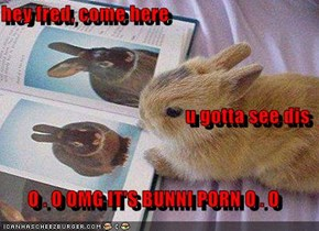 hey fred, come here u gotta see dis O . O OMG IT'S BUNNI PORN O . O