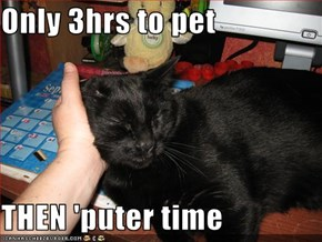 Only 3hrs to pet  THEN 'puter time