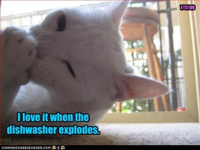 I love it when the dishwasher explodes.