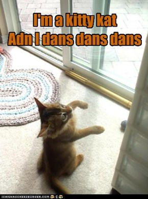 I'm a kitty kat Adn I dans dans dans