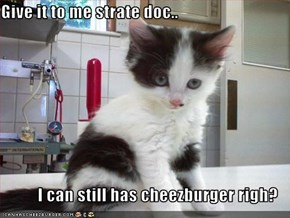 Give it to me strate doc..  I can still has cheezburger righ?