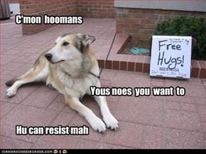 C'mon  hoomans