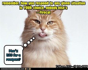 remember,  how  you  respond  to  any  given  situation   is  YOUR  choice , nobody else's ---Firecat