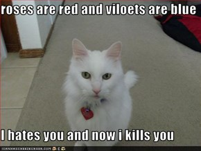 roses are red and viloets are blue  I hates you and now i kills you