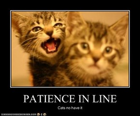 PATIENCE IN LINE