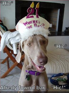 *Hic* *Hic* Alredy fownd bar... *Hic!*