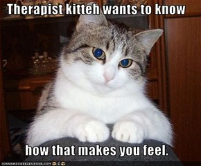 Therapist kitteh wants to know  how that makes you feel.