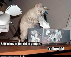 See, u hav to get rid of goggie -
