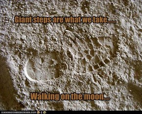 Giant steps are what we take......