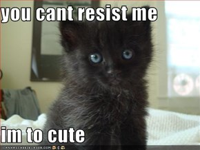 you cant resist me  im to cute