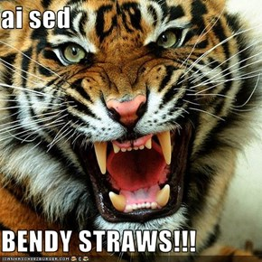ai sed   BENDY STRAWS!!!