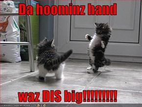 Da hoominz hand  waz DIS big!!!!!!!!!