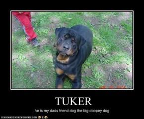 TUKER