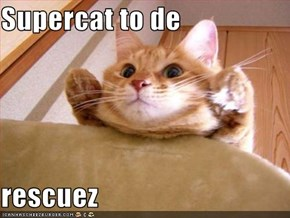 Supercat to de  rescuez