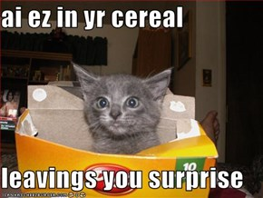 ai ez in yr cereal  leavings you surprise