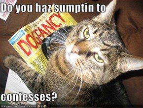 Do you haz sumptin to  confesses?
