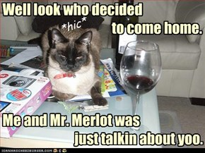 Well look who decided                                          to come home.     Me and Mr. Merlot was                            just talkin about yoo.