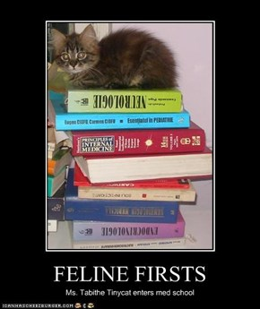 FELINE FIRSTS