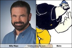 Billy Mays Totally Looks Like  Bluto