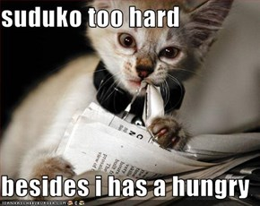 suduko too hard  besides i has a hungry