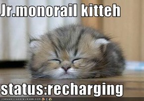 Jr.monorail kitteh  status:recharging