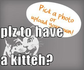 plz to have a kitteh?