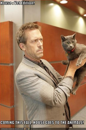 House : Vet Edition!   COMING THIS FALL, HOUSE GOES TO THE ANIMALS!