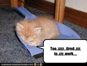 Too..zzzz...tired..zzz. to..zzz..work.....
