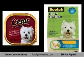 Cesar Canine Cuisine Totally Looks Like 3M Fur Fighter