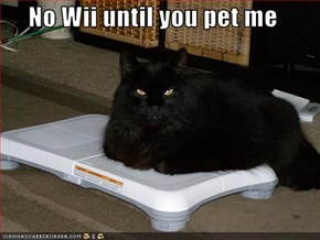 No Wii until you pet me