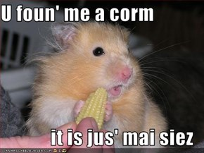 U foun' me a corm  it is jus' mai siez