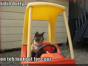 ridin durty  on teh lookout for copz