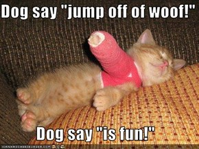"Dog say ""jump off of woof!""  Dog say ""is fun!"""