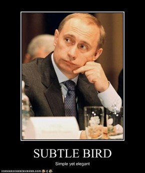 SUBTLE BIRD