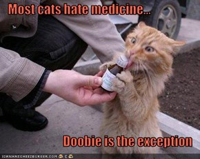 Most cats hate medicine...  Doobie is the exception