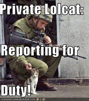 Private Lolcat: Reporting for Duty!