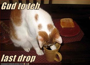 Gud to teh  last drop